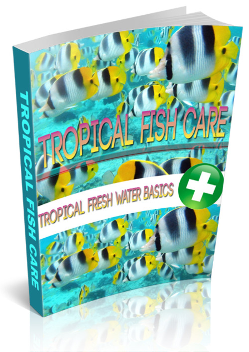 Product picture Tropical Fish Care